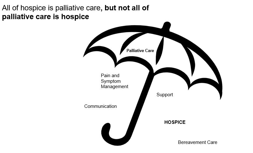 hospice versus palliative care